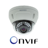 ONVIF High-end 1080P Vandal